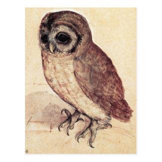 Albrecht Durer la carte postale de petit hibou
