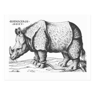 Albrecht Durer - rhinocéros Carte Postale