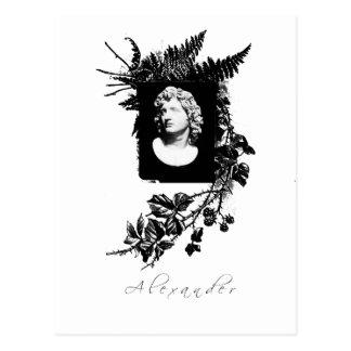 Alexandre le grand carte postale