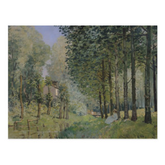 Alfred Sisley   le repos par le courant Carte Postale