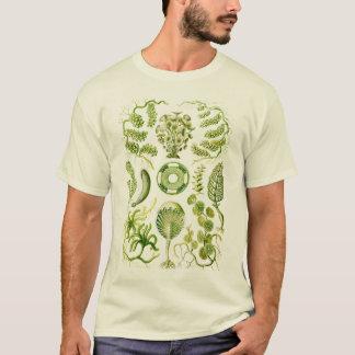 Algues T-shirt