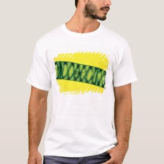 Algues vertes de Spirogyra T-shirt