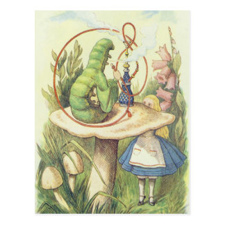 Alice rencontre Caterpillar Cartes Postales