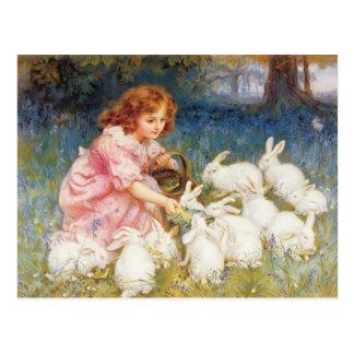 Alimentation des lapins carte postale