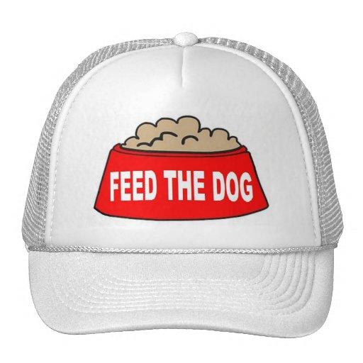 Alimentation rouge de bol d'aliments pour chiens d casquettes