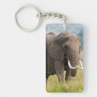 Alimentations solitaires d'éléphant (Loxodonta Porte-clé Rectangulaire En Acrylique Double Face