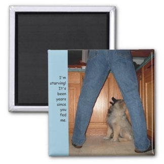 Alimentez l'aimant affamé de chien magnet carré