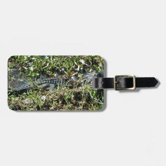 Alligator de marais de la Louisiane en fin de Jean Étiquettes Bagages