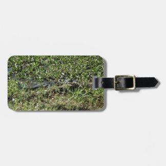 Alligator de marais de la Louisiane en Jean Étiquette Pour Bagages