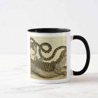 Alligator et serpent, 1730 (gravure colorée) mug