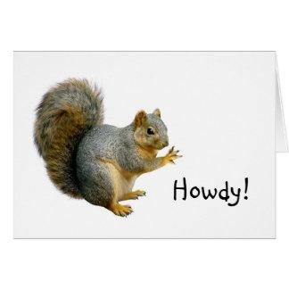 Allo carte d'écureuil