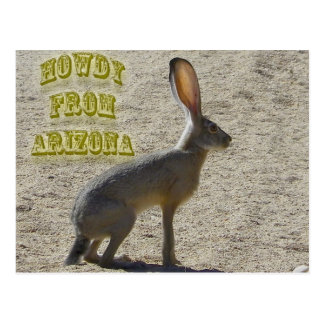 Allo d'Arizona Carte Postale