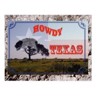 Allo du Texas Carte Postale