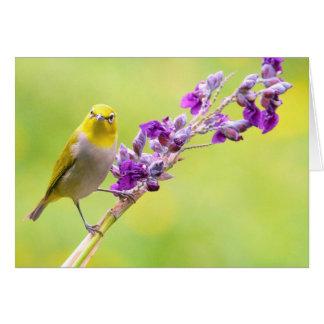 Allo/oiseau jaune sur les branches fleurissantes cartes de vœux