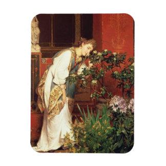 Alma-Tadema | dans le Peristylum, 1866 Magnet Flexible