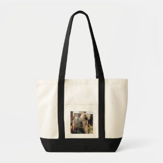 Alma-Tadema | qui est lui ? , 1884 Tote Bag