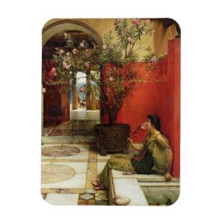 Alma-Tadema | un oléandre, 1882 Magnet Flexible