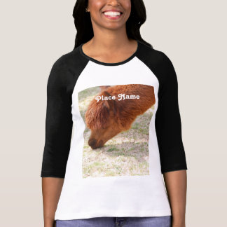 Alpaga T-shirt