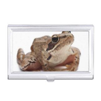 Amarrez la grenouille - arvalis de Rana Boîtier Pour Cartes De Visite