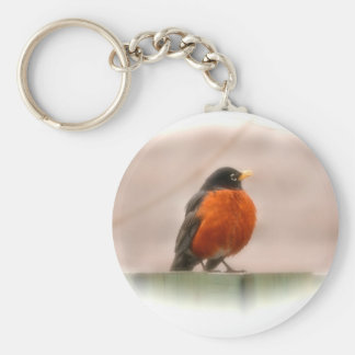 Américain animal Robin d'oiseau Porte-clés