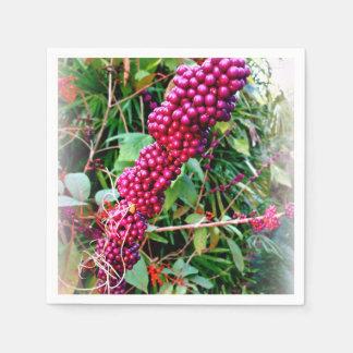 Américain Beautyberry aux jardins la Floride de Serviettes En Papier