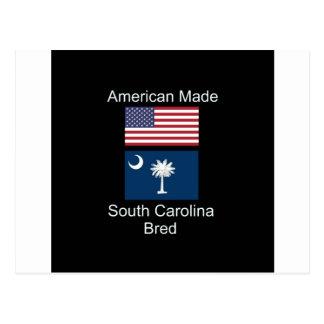 """""""Américain soutenu. La Caroline du Sud a multiplié Carte Postale"""