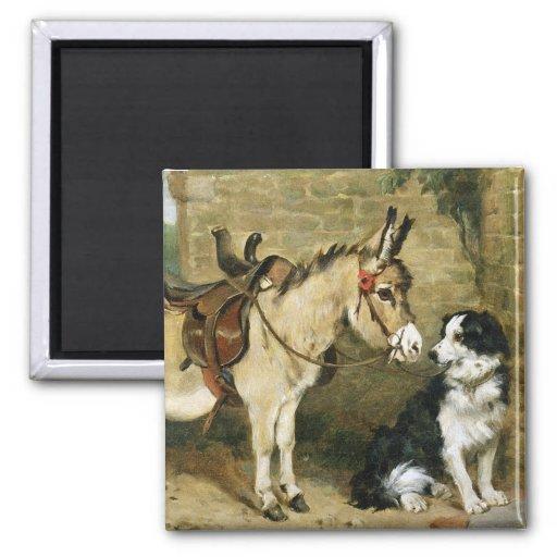 Amis animaux de chien et d'âne - art vintage par E Magnets Pour Réfrigérateur