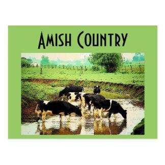 Amish effraye la carte postale
