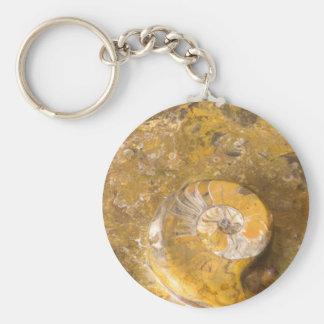 Ammonite et d'autres fossiles en photo polie de porte-clé rond