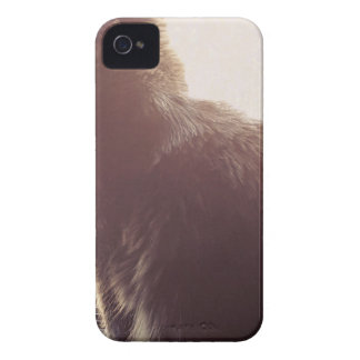 Amour Coques Case-Mate iPhone 4