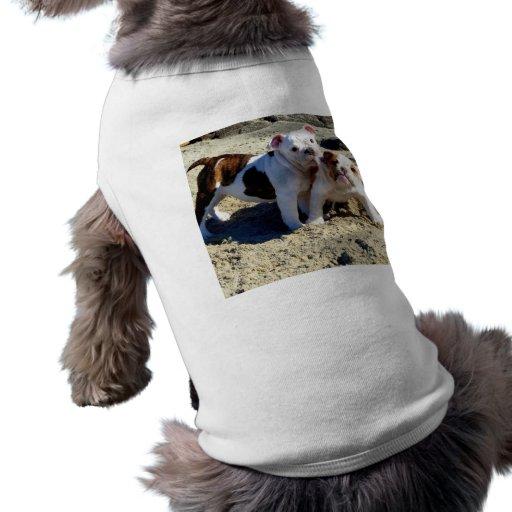 Amour de chiot anglais de bouledogues ! manteaux pour animaux domestiques