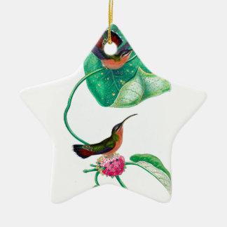 Amour de colibri ornement étoile en céramique