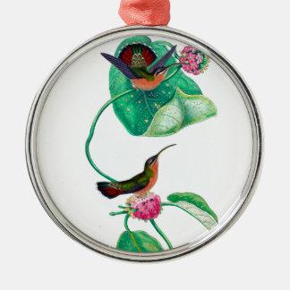 Amour de colibri ornement rond argenté
