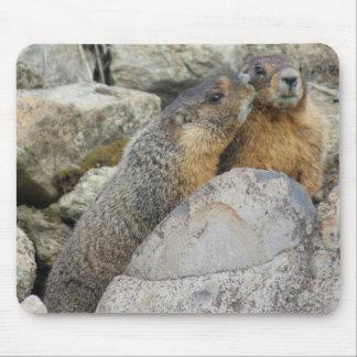 Amour de Marmot Tapis De Souris