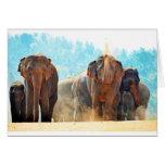 Amour de paix de destin de safari d'animaux d'élép cartes