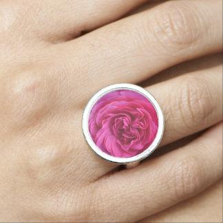 Amour de rose de rose bague avec photo
