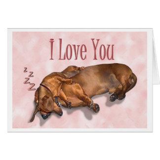 Amour de teckel carte de vœux