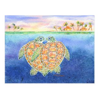 Amour de tortue cartes postales