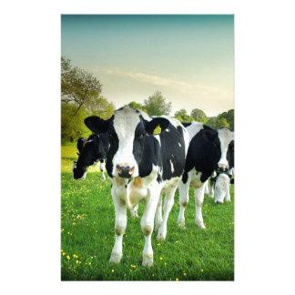 Amour de vaches à regarder fixement papiers à lettres