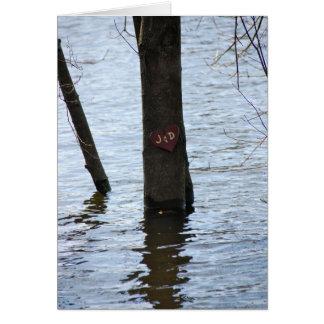 Amour inondé cartes