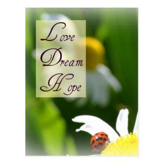 Amour, rêve, carte postale de coccinelle d'espoir