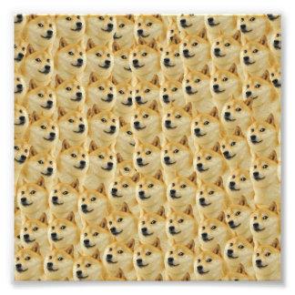 amusement de doge de shibe et meme drôle adorables art photographique