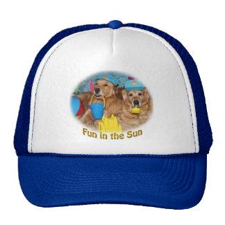Amusement de golden retriever au soleil casquettes de camionneur