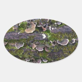 amusement moussu de champignon sticker ovale