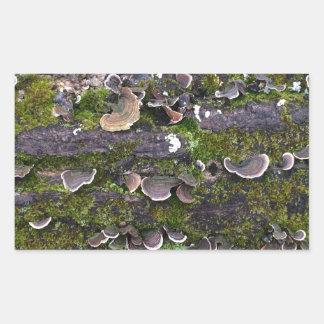 amusement moussu de champignon sticker rectangulaire