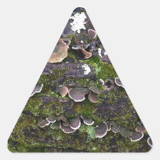amusement moussu de champignon sticker triangulaire