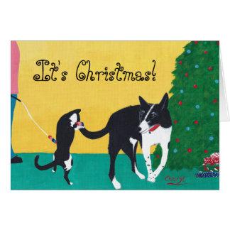 Amusement son chat de chien de Noël jouant aux Carte De Vœux