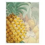 Ananas avec l'élargissement posters