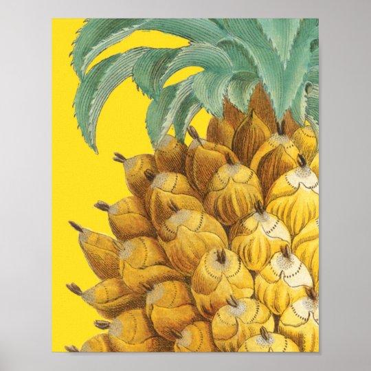 Ananas botanique en jaune poster