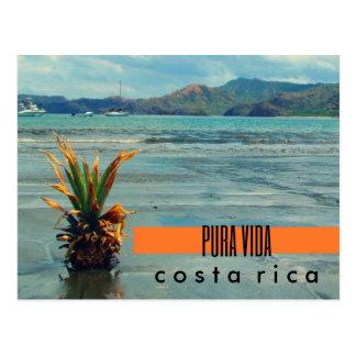 Ananas du Costa Rica sur la carte postale de plage